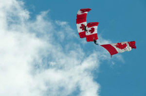 Canadian Armed Forces Parachute Team - The SkyHawks